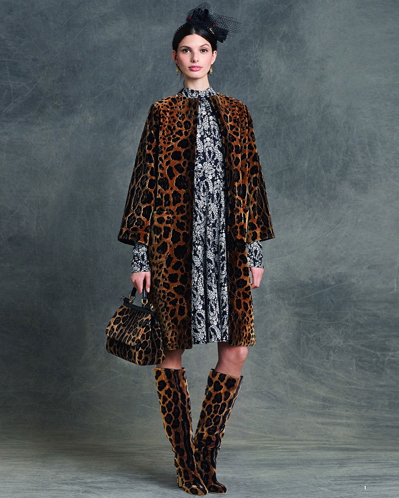 Dolce & Gabbana Embroidered Leopard-Print Coat