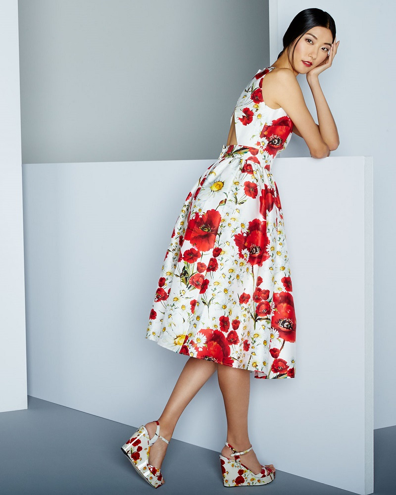 Dolce & Gabbana Poppy & Daisy Open-Back Party Dress