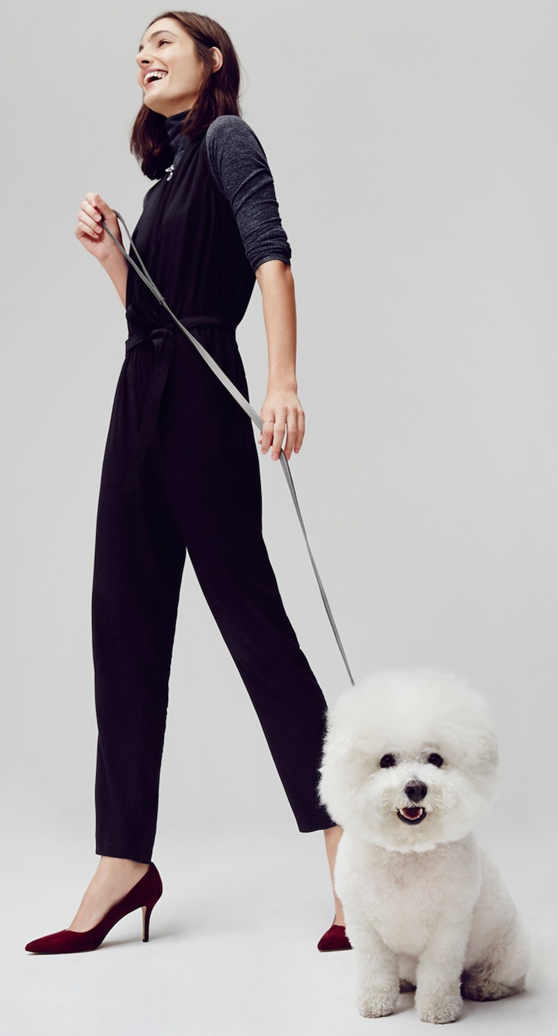 LOFT Wrap Jumpsuit