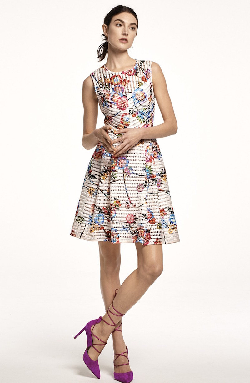 Gabby Skye Floral Scuba Mesh Fit & Flare Dress