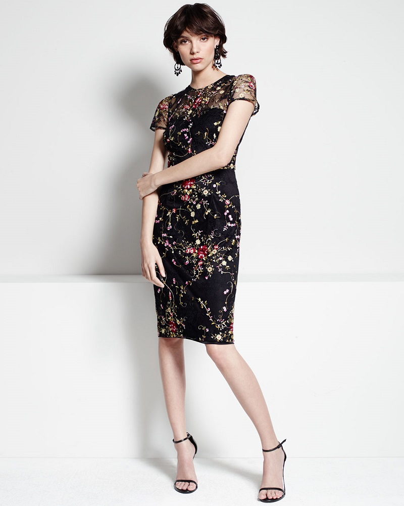 David Meister Short-Sleeve Floral Embroidered Cocktail Dress