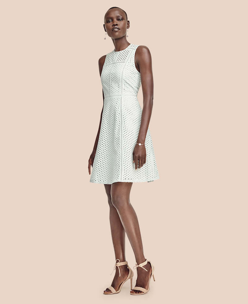 Ann Taylor Eyelet Seamed Flare Dress