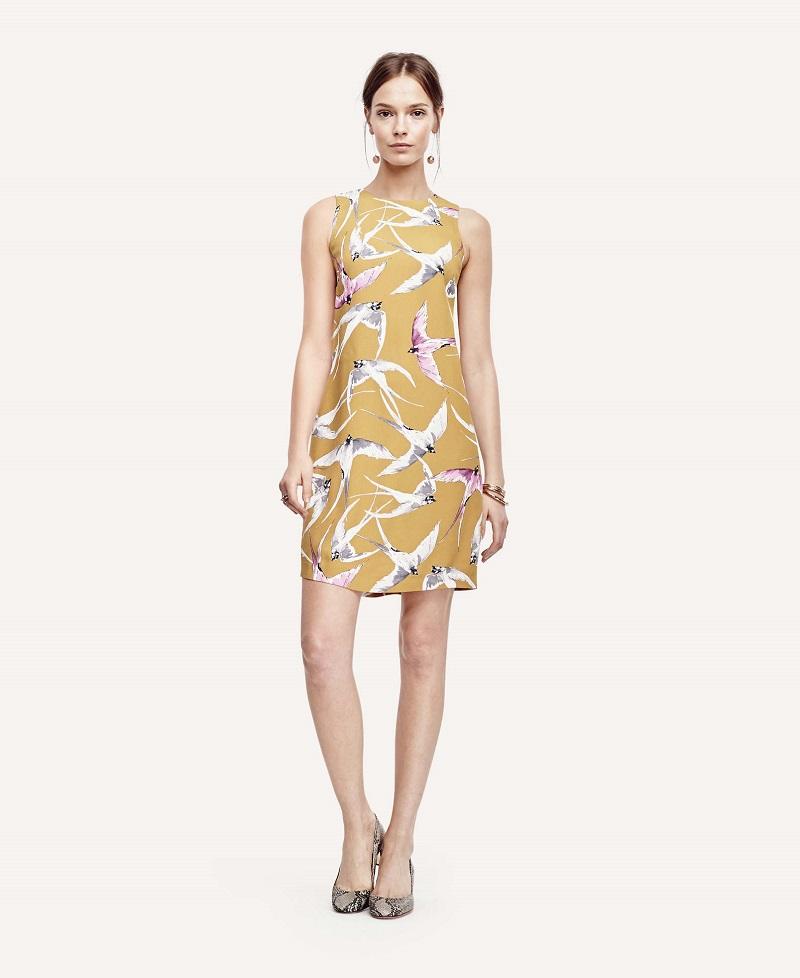 Ann Taylor Mojave Shift Dress