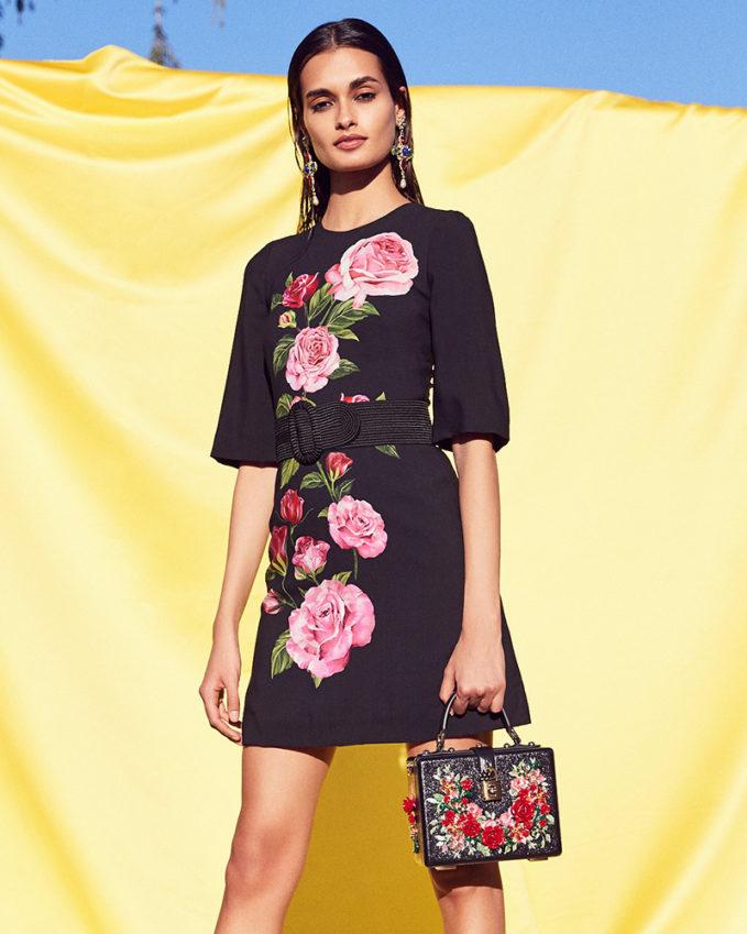 Dolce & Gabbana Cady Rose Print Mini Dress