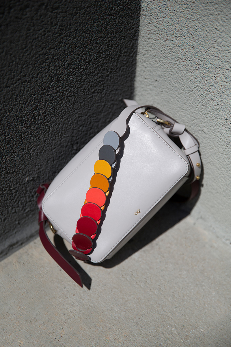 Anya Hindmarch Mini Circle Leather Crossbody Bag