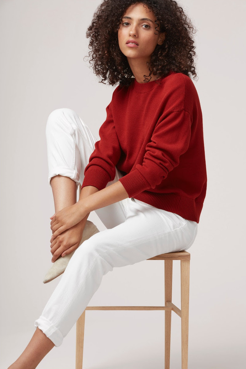 Everlane Cotton Long-Sleeve Crew