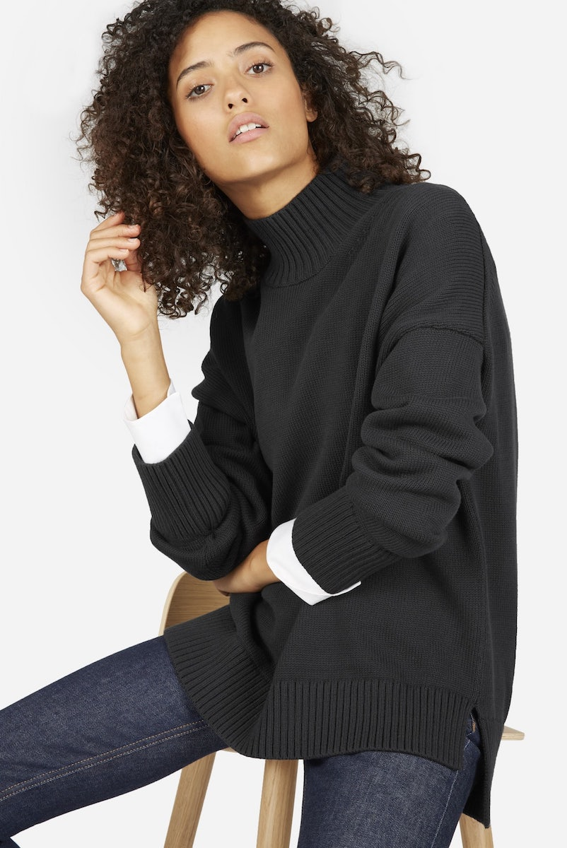 Everlane Cotton Turtleneck