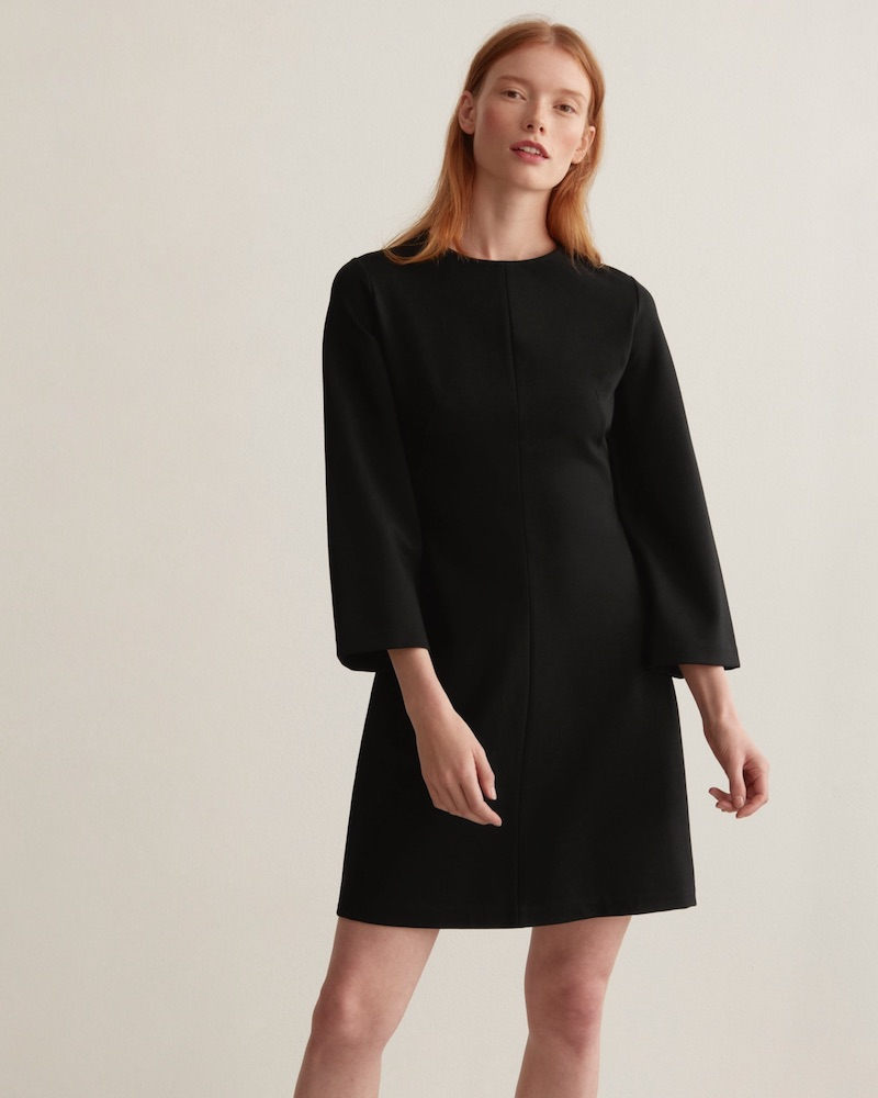 Everlane Long-Sleeve Shift Dress