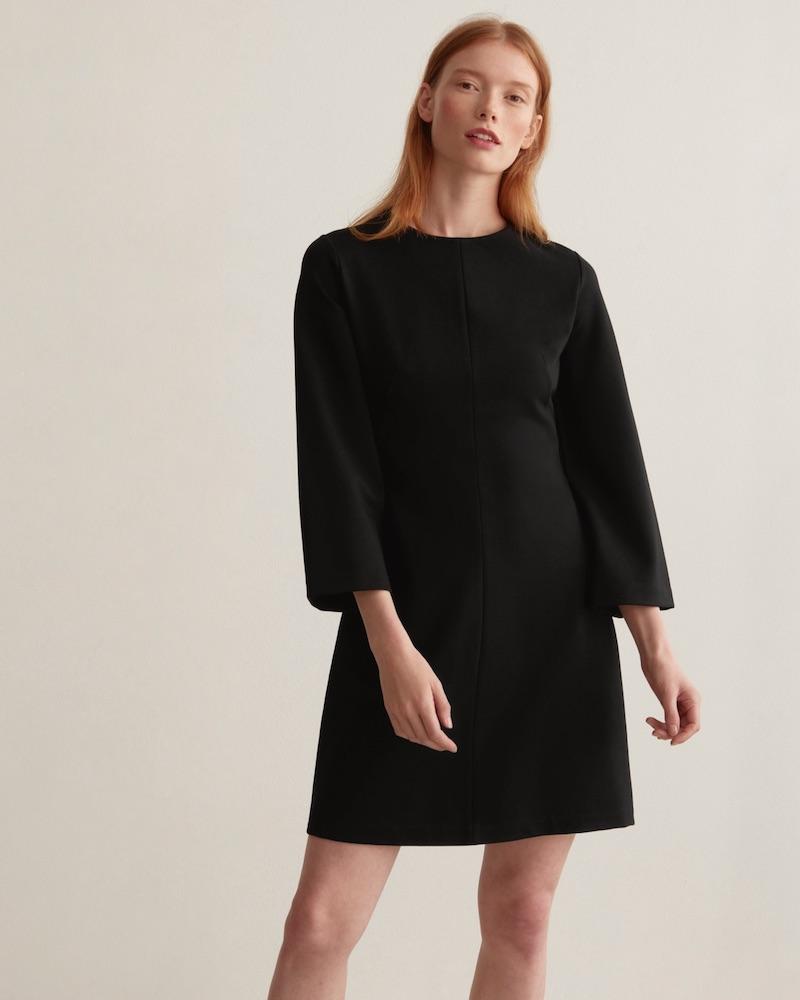 Everlane Long-Sleeve Shift Dress