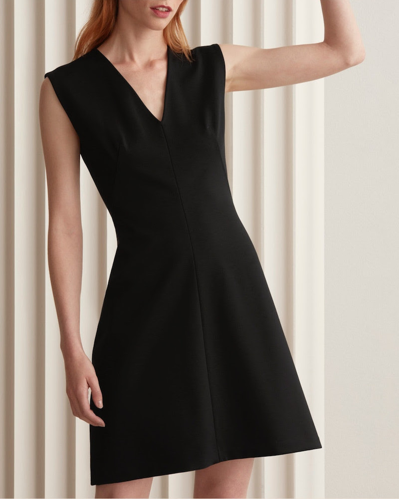 Everlane Sleeveless V-Neck Flare Dress