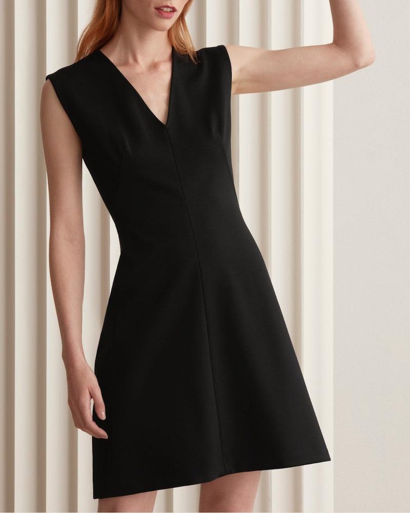 Everlane Sleeveless V-Neck Flare Dress