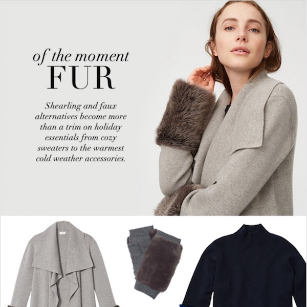 Of the Moment Fur Club Monaco Winter Essentials