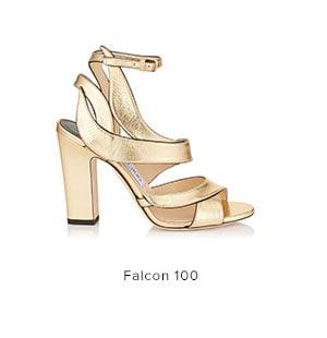 Shop Falcon100
