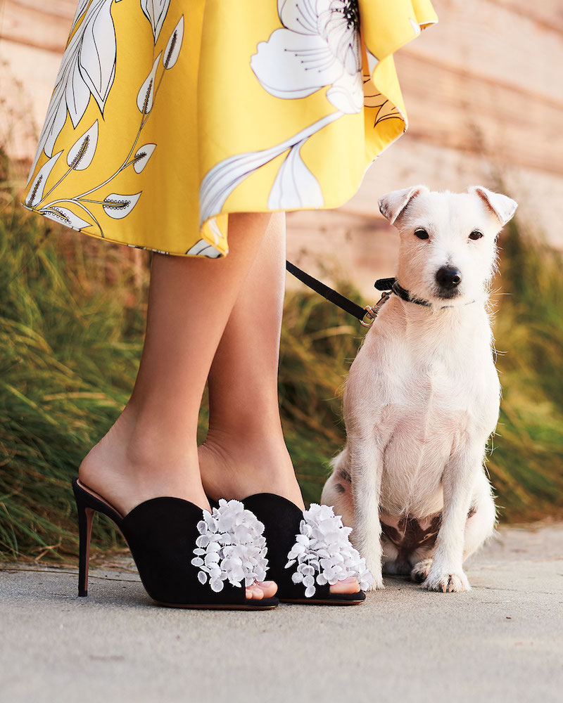 A Girl S Best Friends Neiman Marcus Spring 2018 Shoes