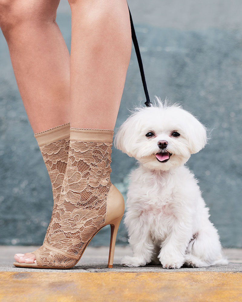 Gianvito Rossi Stretch-Lace High Bootie
