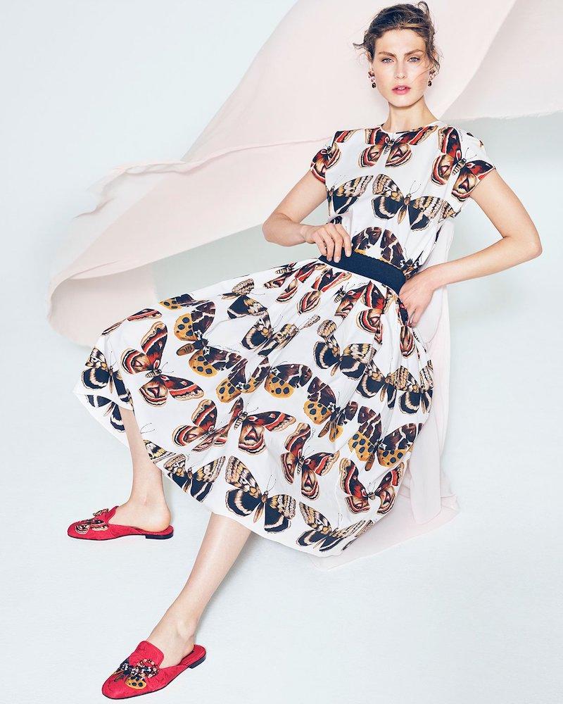 Dolce & Gabbana Butterfly-Print Cotton-Poplin Top