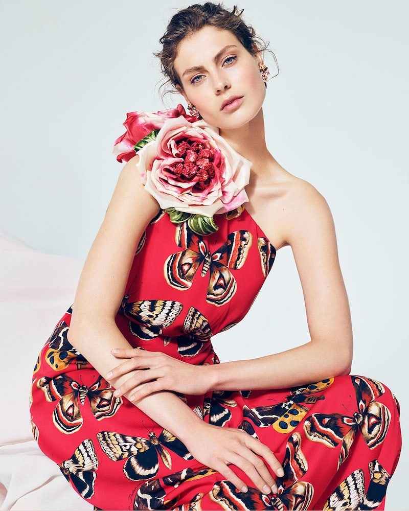 Dolce & Gabbana Rose Motif Butterfly-Print Silk-Charmeuse Dress