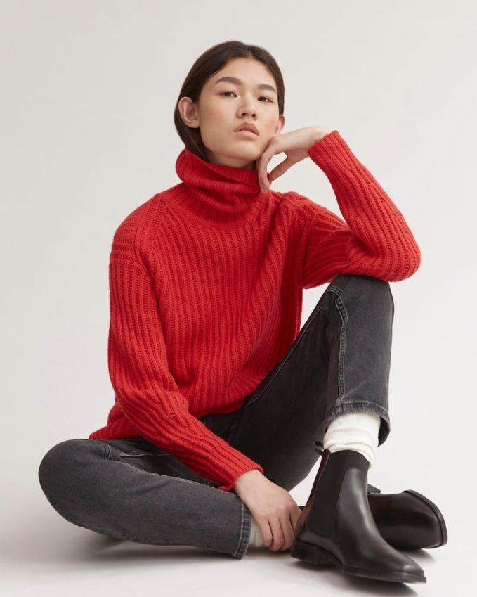 Everlane Soft Wool Rib Turtleneck