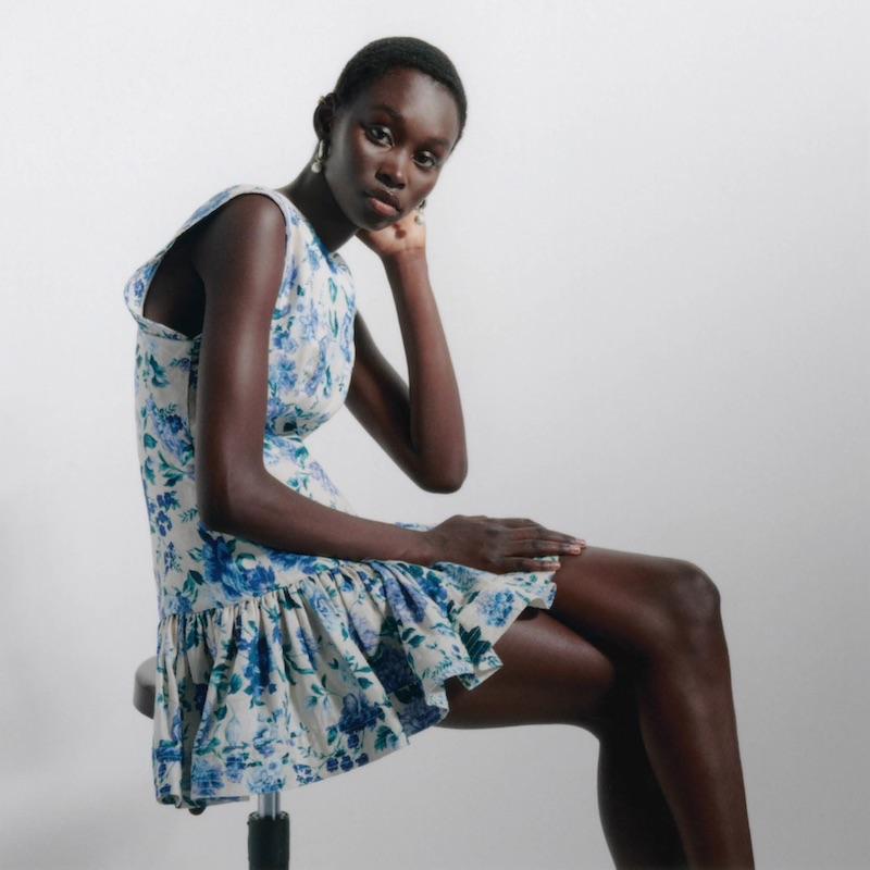 Zimmermann Moncur Ruffled Floral Silk Chiffon Dresss