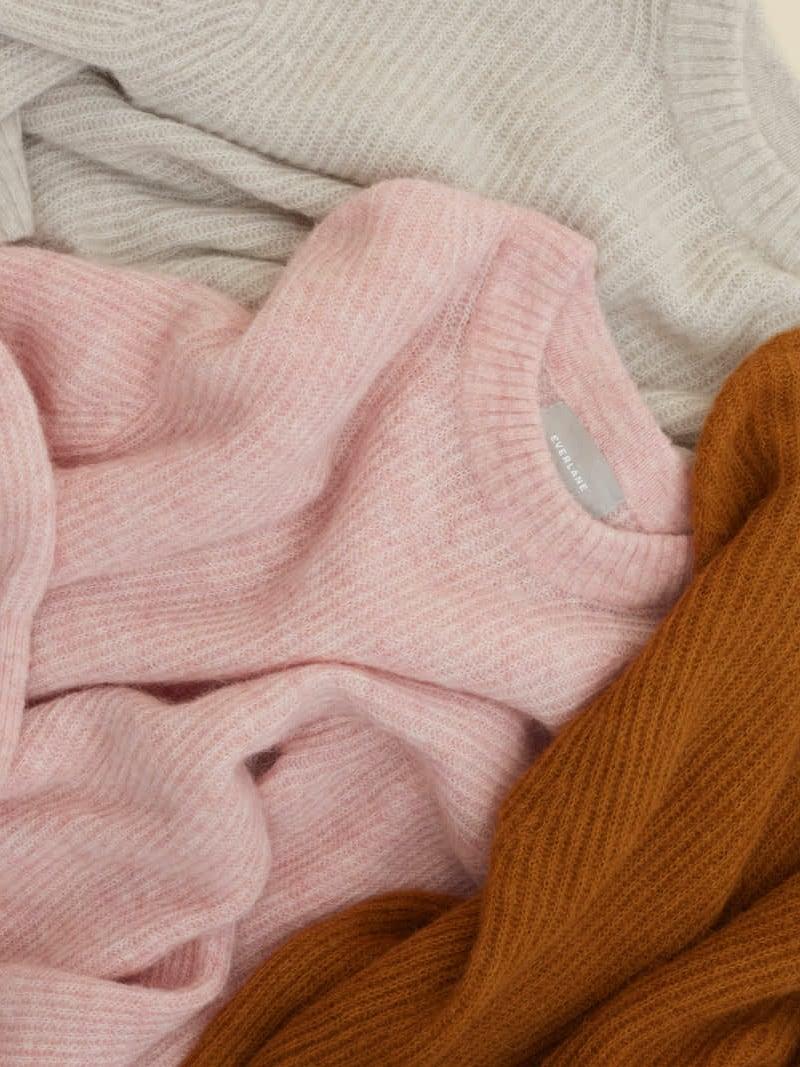 Everlane Alpaca V-Neck Sweater