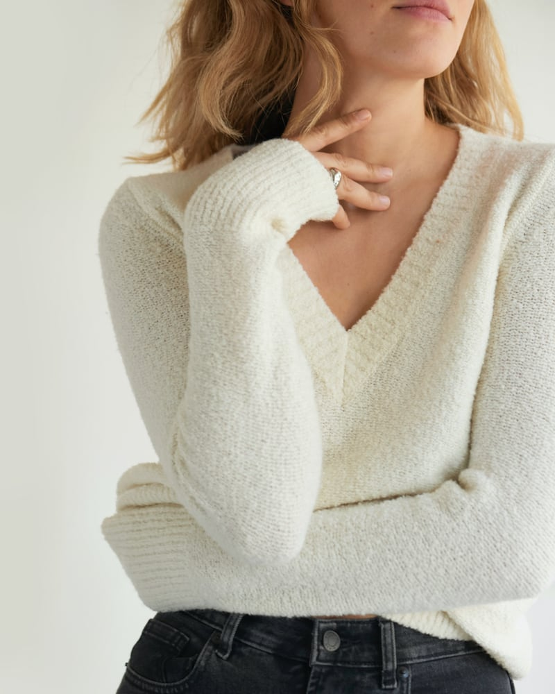 Everlane Teddy V-Neck Sweater