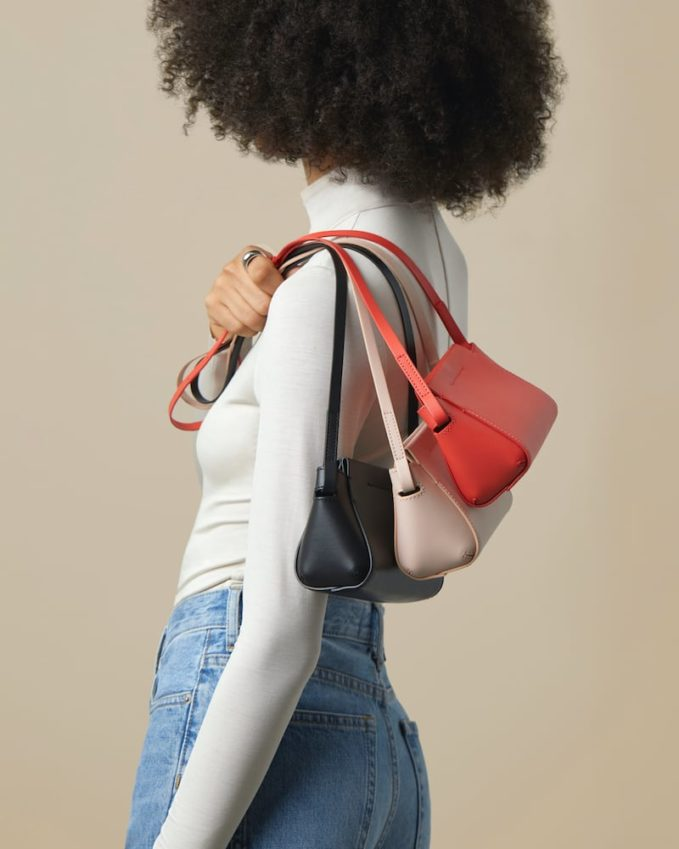 Everlane Micro Form Bag