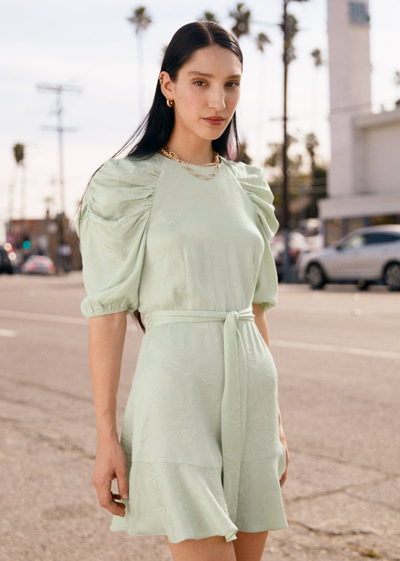 & Other Stories Belted Puff Sleeve Mini Dress