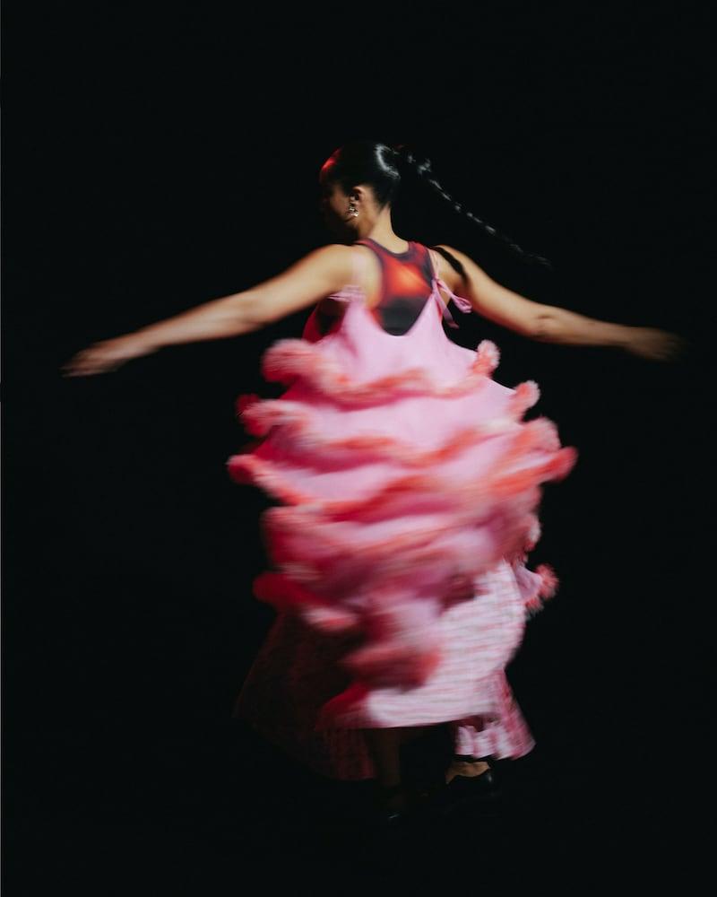 Ashley Williams Pink Feathers Cake Dress