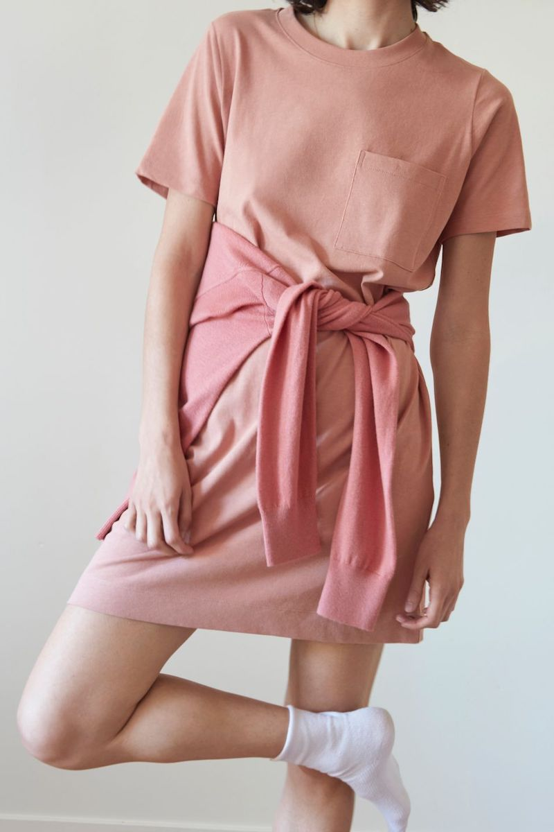 Everlane Weekend Tee Dress