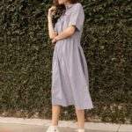 Everlane Parklet Shirtdress